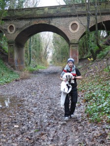 Rescuer Chris with the Badger on the disused railway.