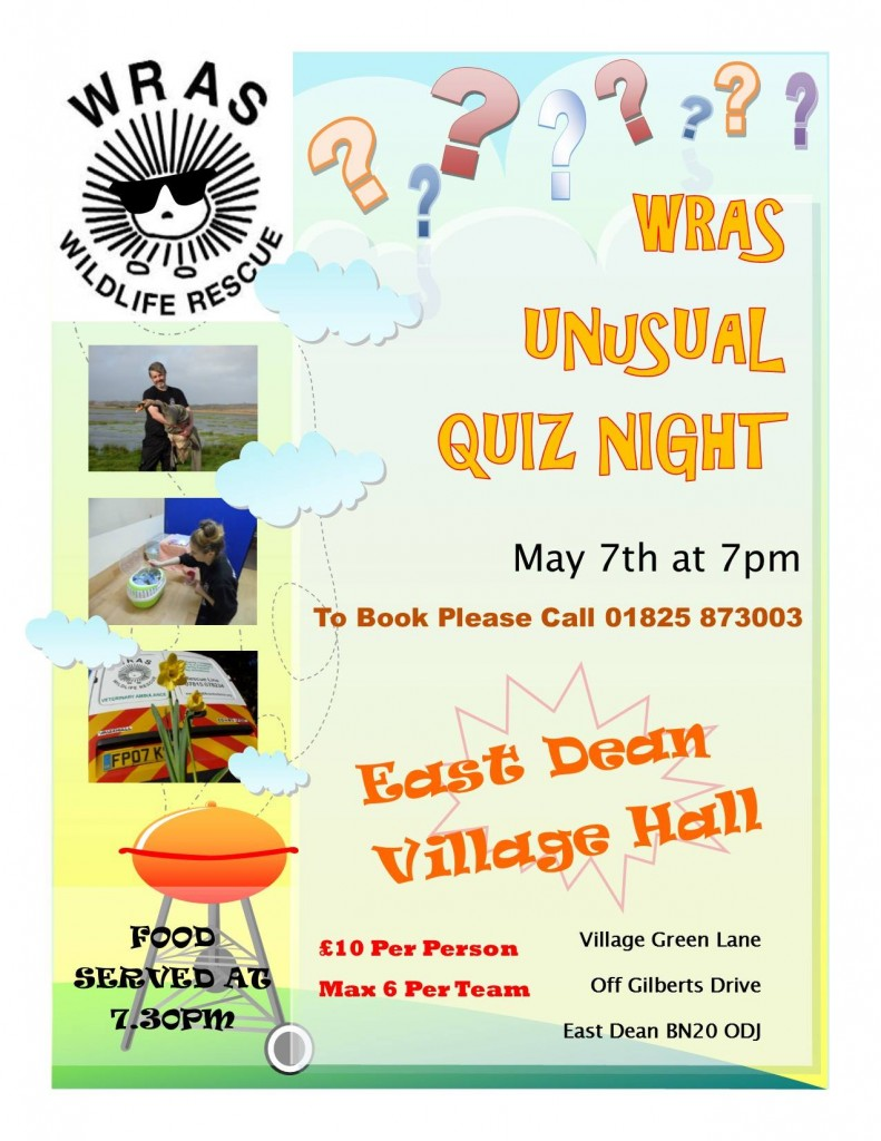 Unusual Quiz NIght Poster